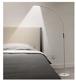 IMIGY Dimmable 9W Floor Lamp, Office/Work/Living Room Readin