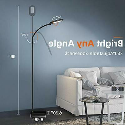 Adjustable LED Floor with Gooseneck, Color Temperature